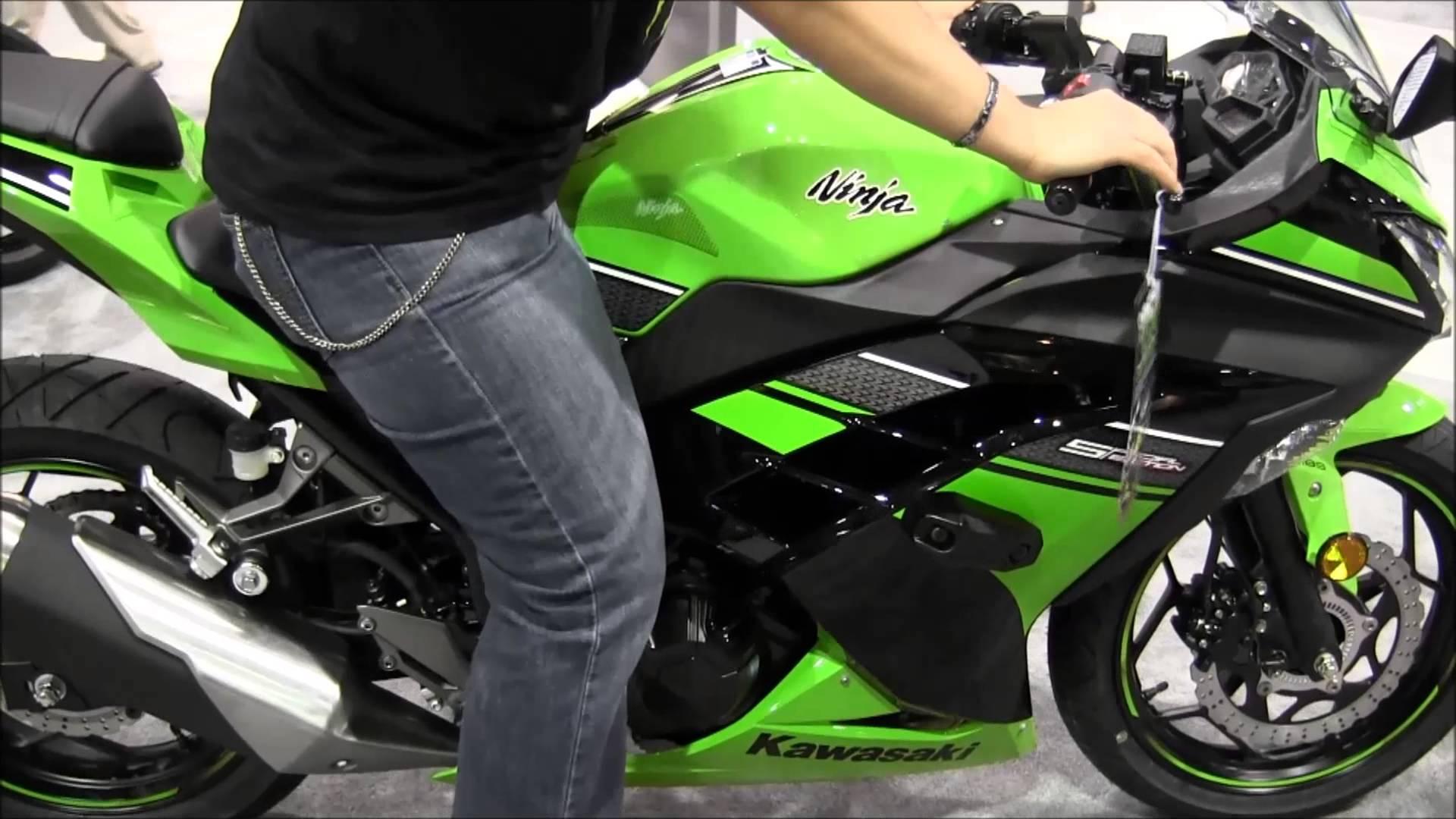 Kawasaki Ninja 300 Special Edition 2017